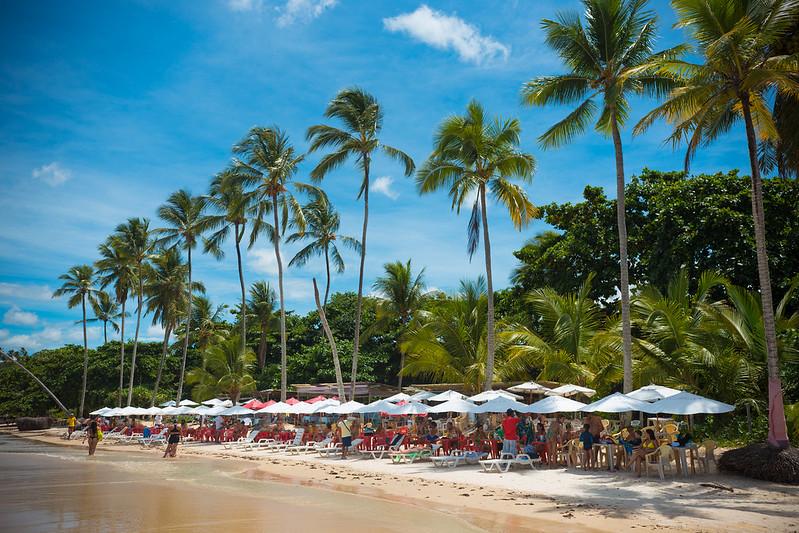 Coqueirais e vários guarda sol com pessoas embaixo na Praia dos Coqueiros em Porto Seguro na Bahia