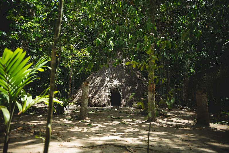 oca escondida na vegetação na  Reserva Pataxó da Jaqueira em Porto Seguro na Bahia