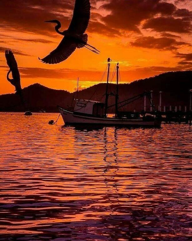 Barco sob a água com gaivotas voando no pôr do sol na Praia da Enseada em Bertioga em São Paulo