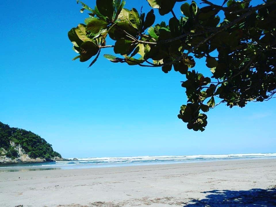 mar e areia com vegetação do lado esquerdo na Praia de Guaratuba em Bertioga em São Paulo